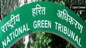 राष्ट्रीय हरित अधिकरण द्वारा लगाईं गई रोक के बाद भी राजस्व अधिकारी मन मौजी काम करते है