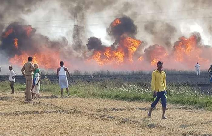 सचेंडी के दो गांवों में भीषण आग, एक हजार बीघा गेहूं की फसल जली, किसानों में हाहाकार