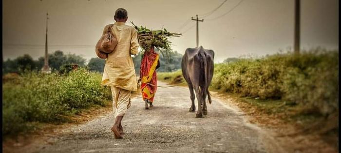 गाँव, मनोहर- संगीता की शादी और कोरोना माई